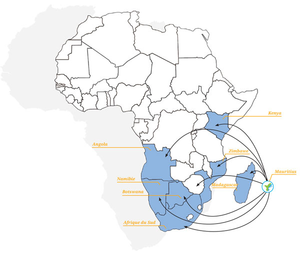 Target-Africa-by-MSI-–-Afrique-terres-d'opportunités